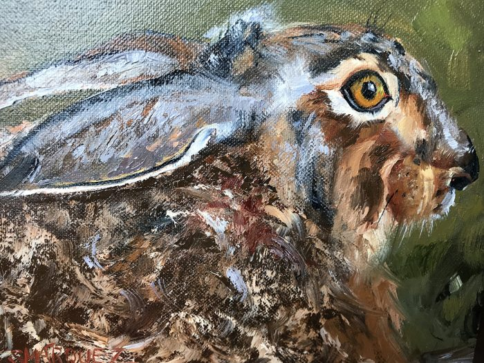 Rabbit oil painting
