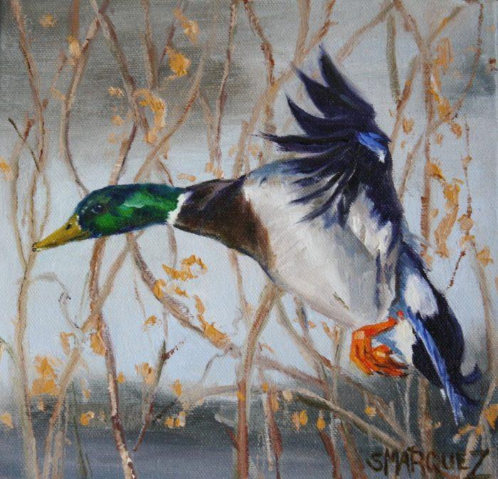mallard duck oil painting