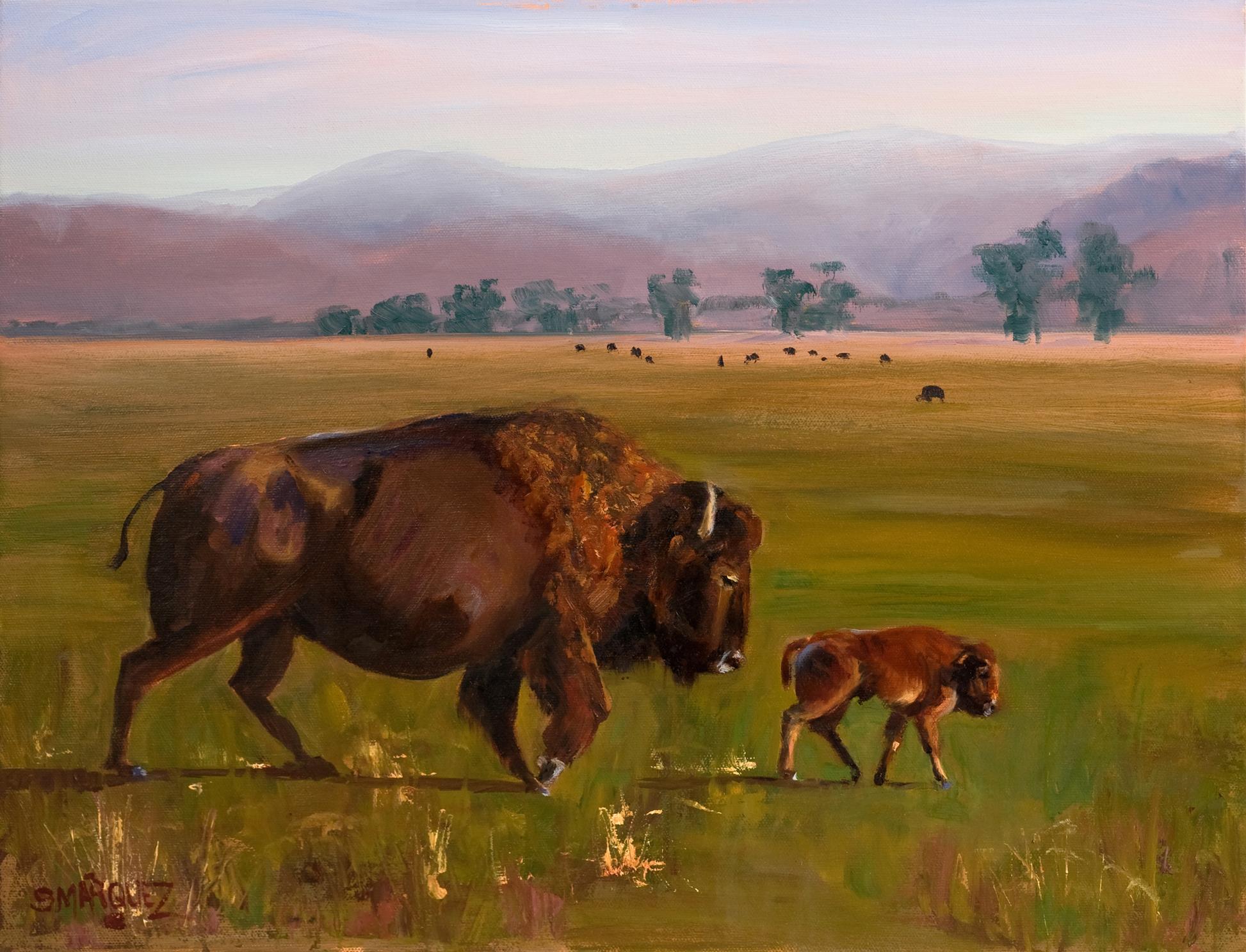 Buffalo Oil Painting