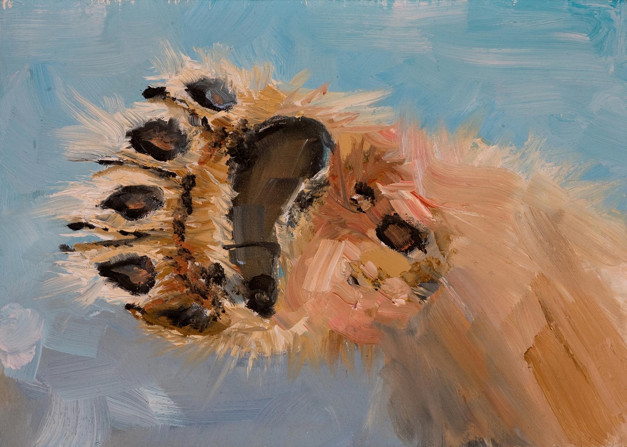 polar bear paw oil painting