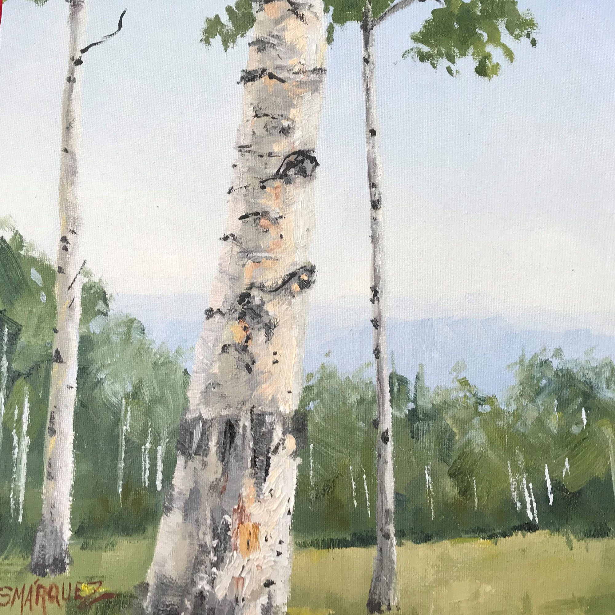Aspen trees on Colorado Mountains oil painting